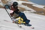 x apf handi ski.jpg