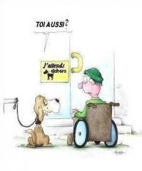 Accessibilite_PMR_comme_des_chiens.jpg